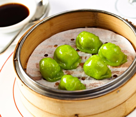 BWW Preview: VEGETARIAN VISION Hosts International Vegetarian Convention in NYC 9/9 and 9/10