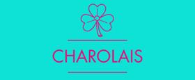 Ireland's Fishamble Returns to 59E59 Theaters with CHAROLAIS Tonight