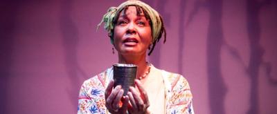BWW Review: THIS RANDOM WORLD Soars at Austin Playhouse