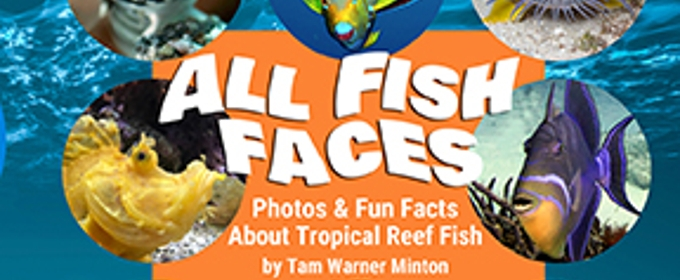 Image result for all fish faces