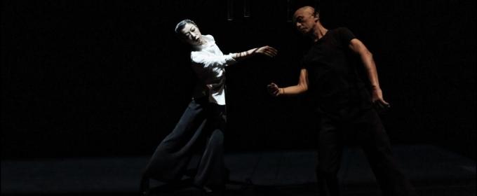 BWW REVIEW:  To See Teshigawara/KARAS' Sleeping Water, Perchance to Dream