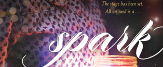 BWW Interview: Holly Schindler, author of SPARK