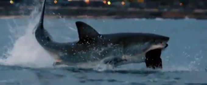 Michael Phelps Raced a Great White During SHARK WEEK - Guess Who Wins!