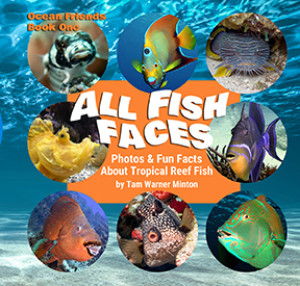 Tam Warner Minton Unveils 'ALL FISH FACES' Book About Tropical Reef Fish