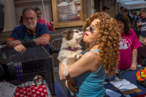 Kate Baldwin, Mamie Parris, Michael Xavier and More Sign on for BROADWAY BARKS; Mary Tyler Moore Award Announced!