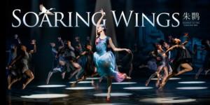 Shanghai Dance Theatre's 'SOARING WINGS' to Make Boston Debut