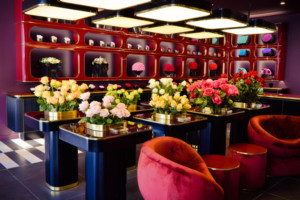 World Luxury Florist Only Roses Launches in Beverly Hills