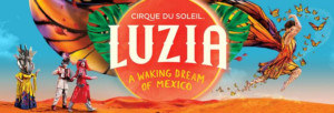 Cirque du Soleil Commissions Mural for Chicago's Year of Public Art