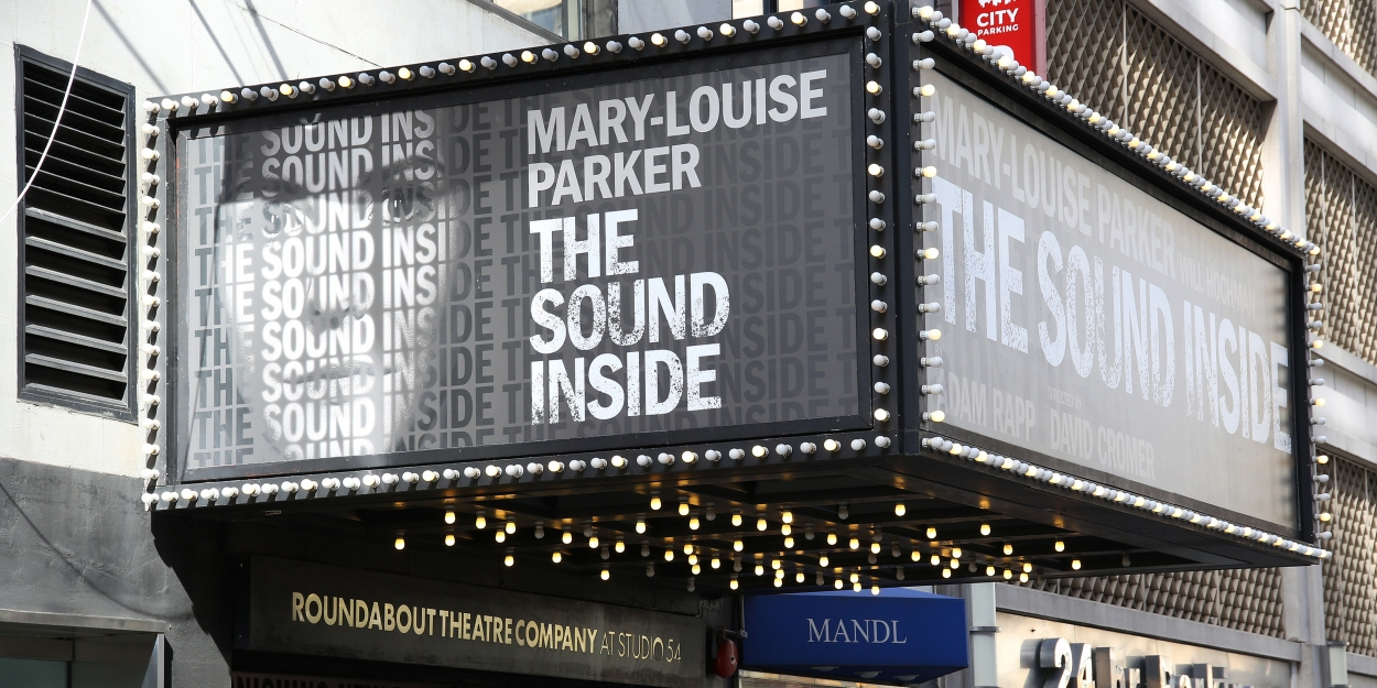 BWW TV: Watch Broadway Walk the Red Carpet on Opening Night of THE SOUND INSIDE