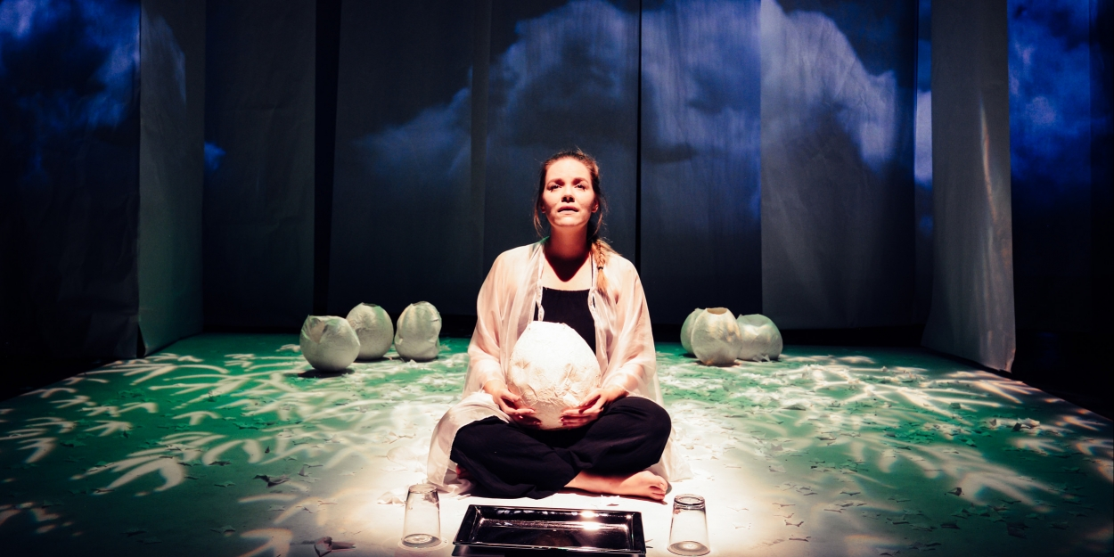 BWW Review: BUTTERFLY at InSeries At Source