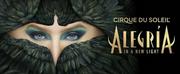 Cirque Du Soleil\