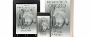David B. Seaburn Releases New Contemporary Drama BROKEN PIECES OF GOD