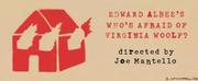 WHOS AFRAID OF VIRGINIA WOOLF? Announces Digital Lottery Photo