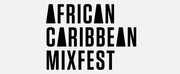 Marin Ireland, Segun Akande & More Join AFRICAN CARIBBEAN MIXFEST Photo