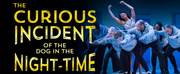 THE CURIOUS INCIDENT OF THE DOG IN THE NIGHT-TIME Begins November 27 At PCS