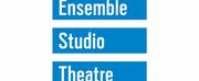 Ensemble Studio Theatre Announces Artistic Director William Carden Plans to Depart Organiz Photo