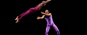 DBDT Kicks Off 45th Anniversary at Jacobs Pillow Dance Festival This Week