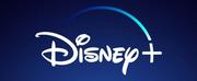 TURNER & HOOCH on Disney Plus Sets Leading Cast Photo