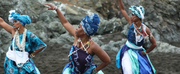 BAM Presents DanceAfrica 2021 Festival Photo