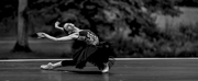 BWW Previews: INAUGURAL FALL GATHERING OF DANCE at Red Rose Farm Photo