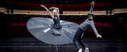 VIDEO: Dutch National Ballet Premieres New Safe Distance Ballet Photo