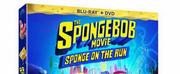 THE SPONGEBOB MOVIE: SPONGE ON THE RUN Arrives on DVD July 13 Photo