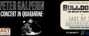 Aaron Grant Theatrical Will Present PETER GALPERIN - CONCERT IN QUARANTINE