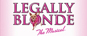 AAA Cercasi Cast Italiano Per LEGALLY BLONDE il Musical! Photo
