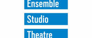 Ensemble Studio Theatre Announces 2019-2020 EST/Youngblood New Members