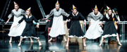Teac Damsa's SWAN LAKE Makes its Cork Debut