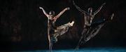 Bangarra Dance Theatre Comes to Sydney Festival 2021 Photo