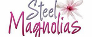 The Hendersonville Performing Arts Company Presents STEEL MAGNOLIAS Photo