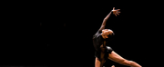 Ballet Edmontons Digital Debut of PERSISTENCE OF MEMORY to be Presented by Brian Webb Danc Photo