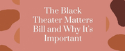 Student Blog: The Black Theater Matters Bill and Why Its Important Photo