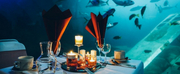 National Marine Aquarium Announces New October Dates For Dining At The Aquarium Photo