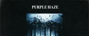 Purple Haze Releases 80s Inspired \