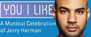 BWW Interview: HAMILTON Mainstay Nicholas Christopher Takes On HERMANs YOU I LIKE Photo