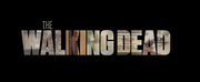 AMC's THE WALKING DEAD Final Season Begins August 22 Photo