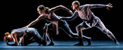 Carlsen Center Presents New Dance Partners Virtual Retrospective Photo