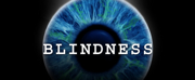 BLINDNESS Adds More Performance Times at The Daryl Roth Theatre Photo