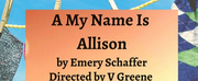 A MY NAME IS ALLISON Makes Its Off-Off-Broadway Debut at The Tank!