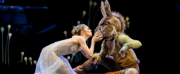 Royal New Zealand Ballet Cancels Performances and Makes Changes to Auditorium