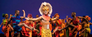 Reviews: THE LION KING Tour Roars Back to the Stage