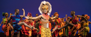 Disneys THE LION KING Celebrates Record Breaking Engagement In North Charleston Photo