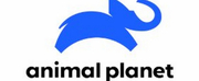 Animal Planet Acquires Worldwide Television Rights to Documentary Film WATSON