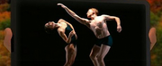 Virtual Hudson Valley Dance Festival Raises $100,219 for Dancers Responding to AIDS Photo