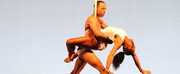 Dallas Black Dance Theatre Presents its Petit Performance Live Across the Dallas Arts Dist Photo