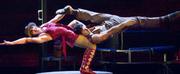 Oklahoma City Community College Welcomes Cirque Mechanics - Birdhouse Factory
