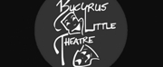 Bucyrus Little Theatre Plans Season of Short Online Plays This Year Photo
