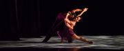 Ballet Hispánico Will Host a Danzón Watch Party Photo